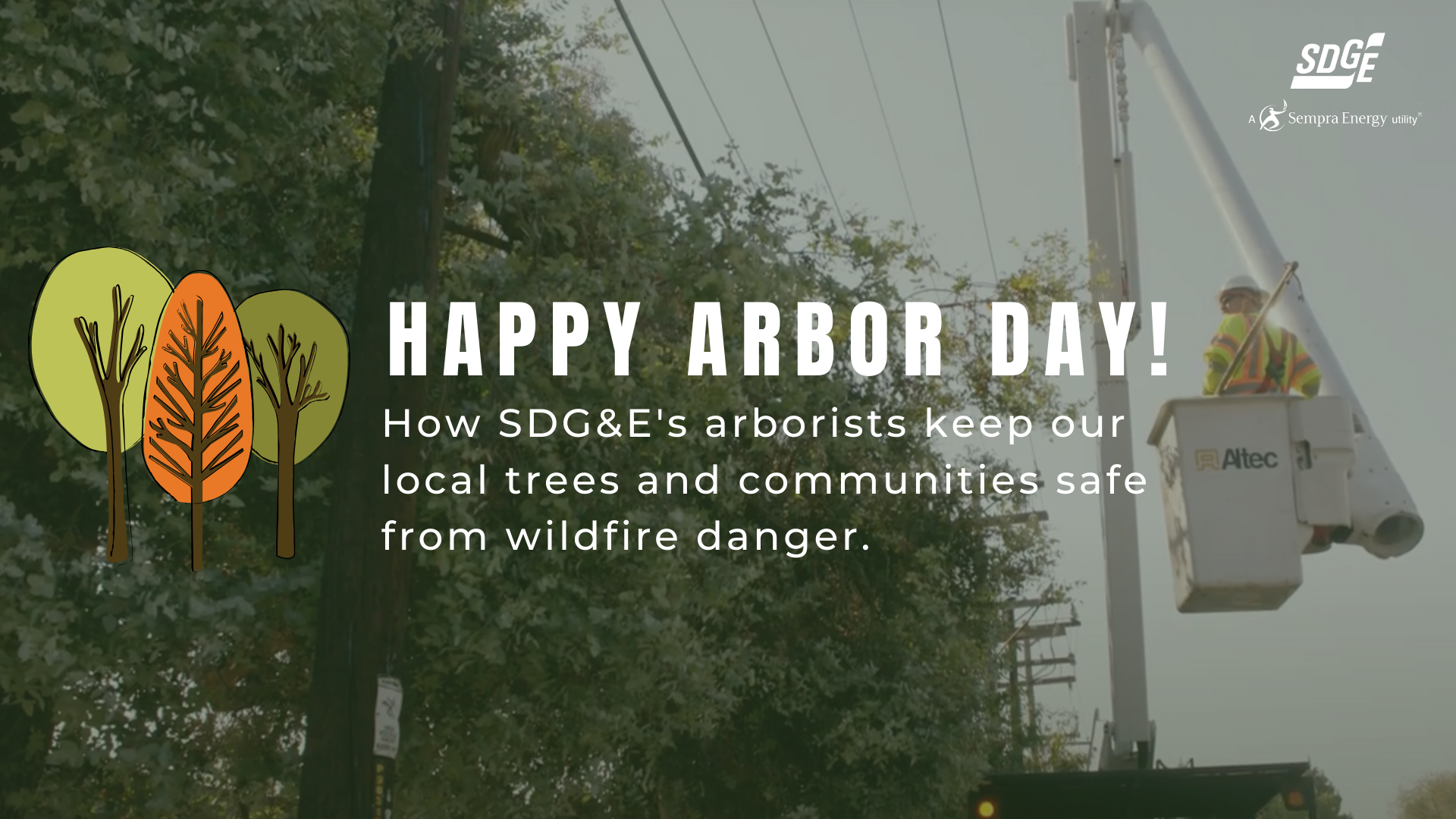 Arbor Day: SDG&E's Arborists Work to Keep Local Trees and Communities Safe