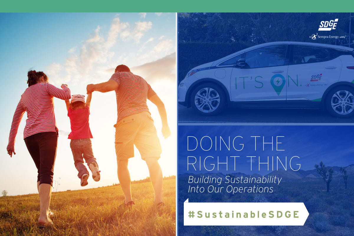 Doing the Right Thing: Building Sustainability into our Operations