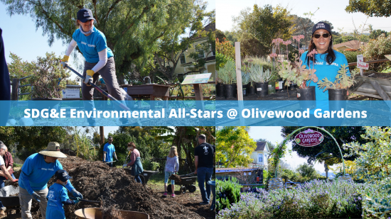 SDG&E Volunteers Assist with Expansion of Olivewood Gardens, Supporting Community Nutrition Education