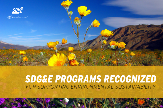 SDG&E Programs Recognized for Supporting Environmental Sustainability