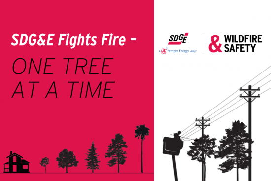 SDG&E Fights Fire: One Tree at a Time