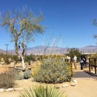 Energy and Nature: The Dynamic Duo at the Center of the Borrego Springs Energy Education Project