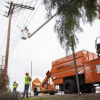 Customer and SDG&E Take Swift Action to Keep Community Safe